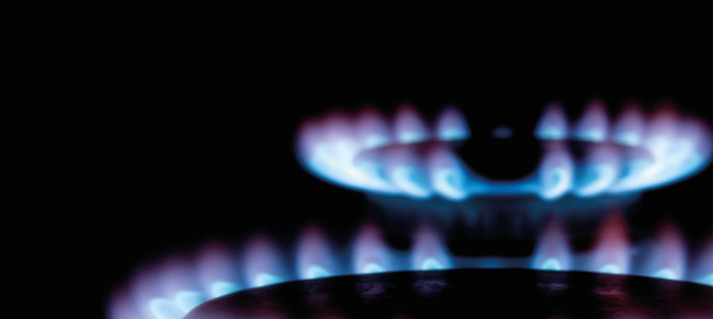 Specialised Training on the Regulation of Gas Markets