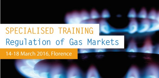 Specialised Training on the Regulation of Gas Markets 2016