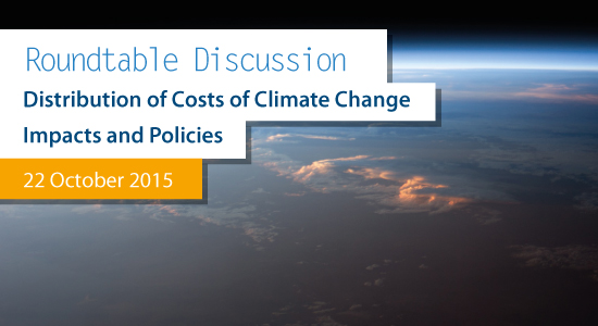 Round Table on the Distribution of Costs of Climate Change Impacts and Policies