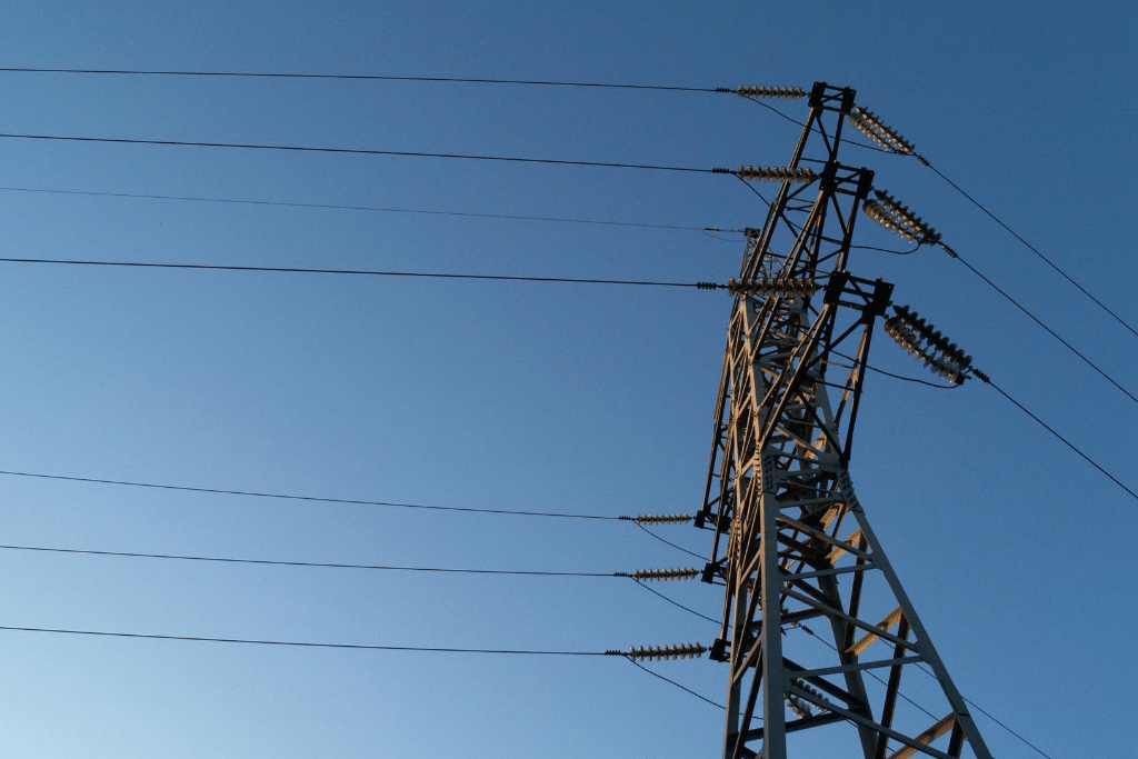 Regulatory Models in the Power Sector