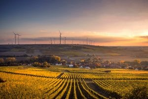 Digitalisation at the core of energy networks: the backbone of the energy transition