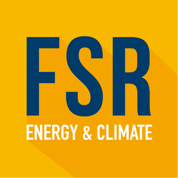 Just published! New FSR Policy Briefs on Digitalisation and Network Tariff Design