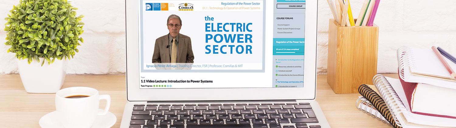 The Regulation of the Power Sector