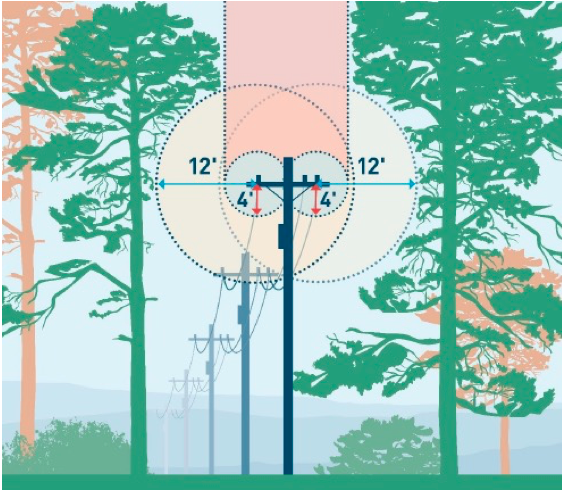 Can trees and poles live side by side?